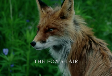 Recensione Outlander Episodio 208: The Fox's Lair